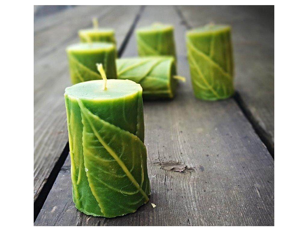 svíčka z včelího vosku listy