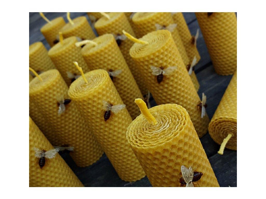 svíčka z včelího vosku včela1