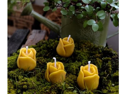 svíčka včelí vosk poupě3