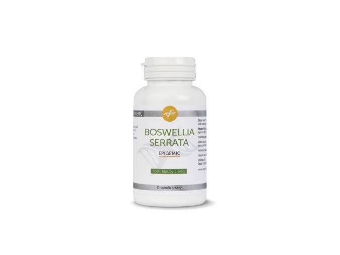 boswellia serrata epigemic 90 kapsli doplnek stravy