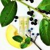 Balzam na rty s chia olejem meloun biorythme