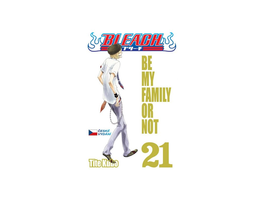 330729 1 bleach 21 be my family or not