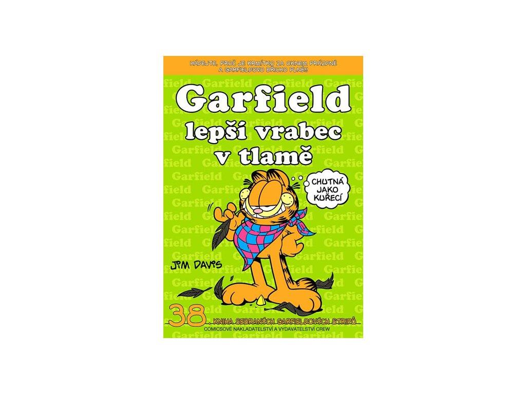 330786 1 garfield lepsi vrabec v tlame c 38