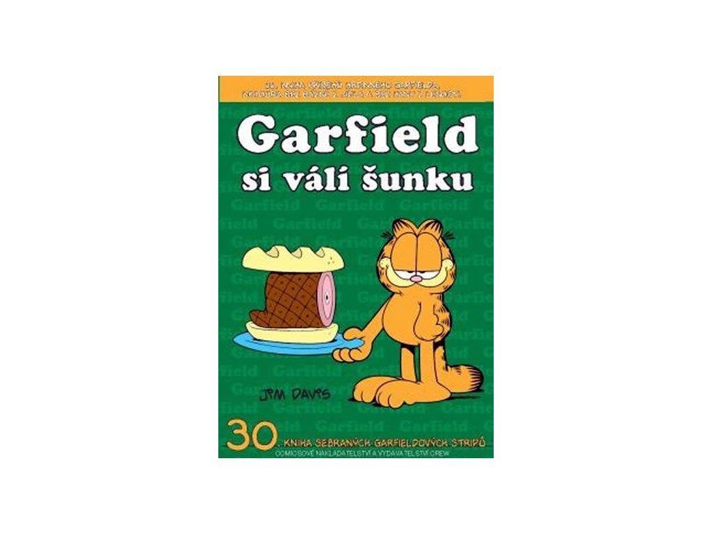 330846 1 garfield si vali sunku c 30