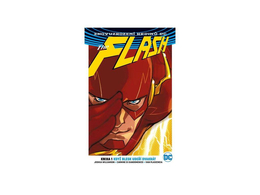 Flash 1 - Blesk udeří dvakrát