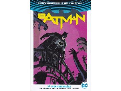 Batman - Já jsem sebevražda
