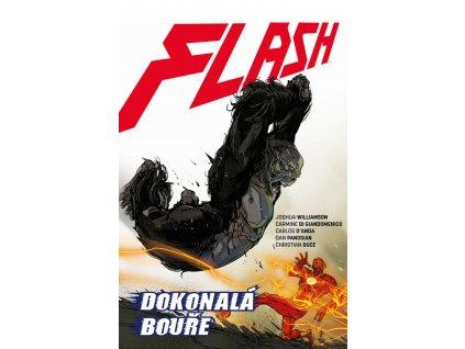 Flash 7 - Dokonalá bouře