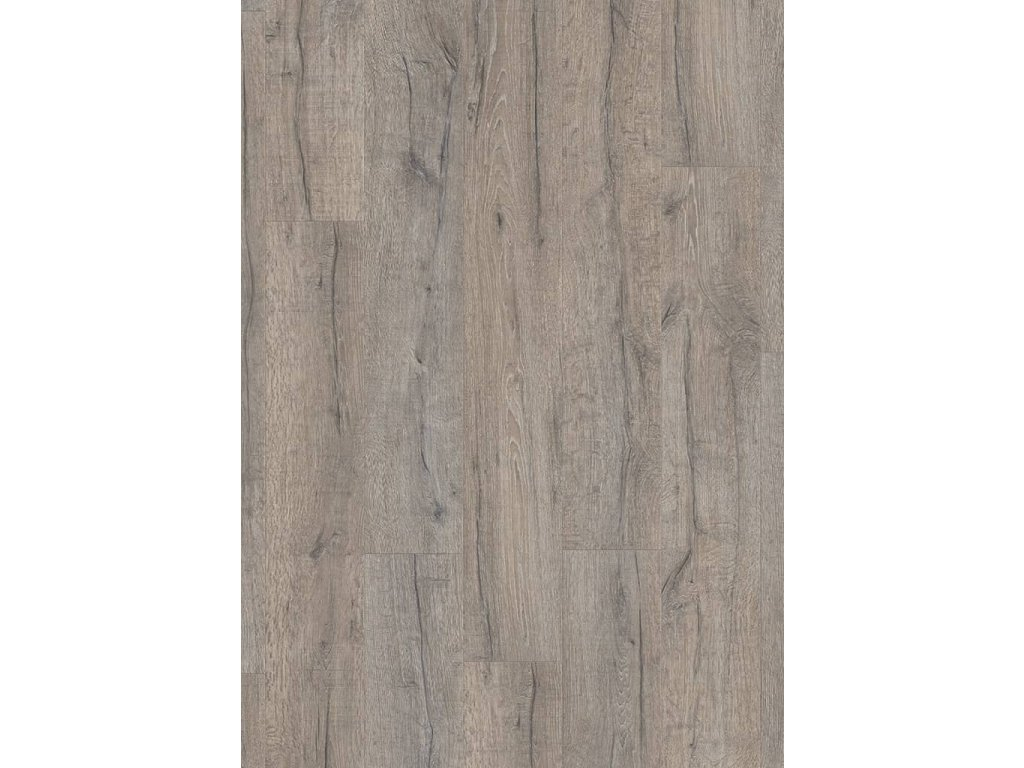 Dub tradiční šedý