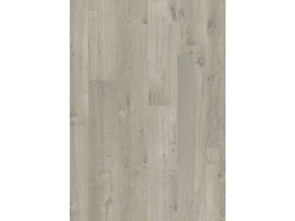 Jemný dub šedý