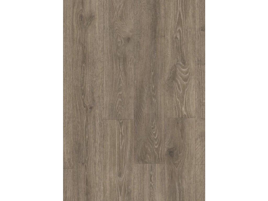 Lesní dub hnědý