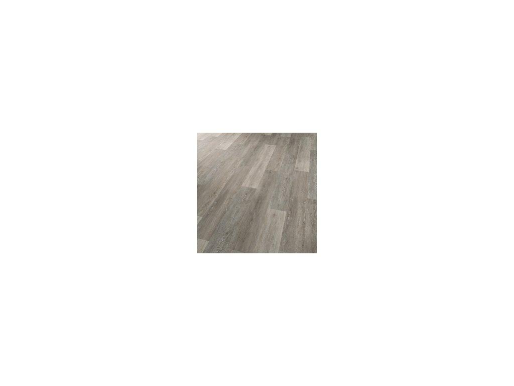 Dub vápněný šedý 30107