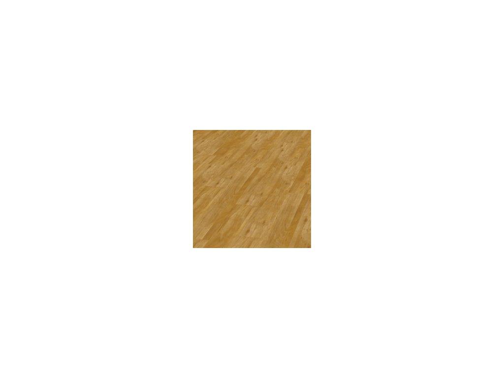Wild Oak | 5953