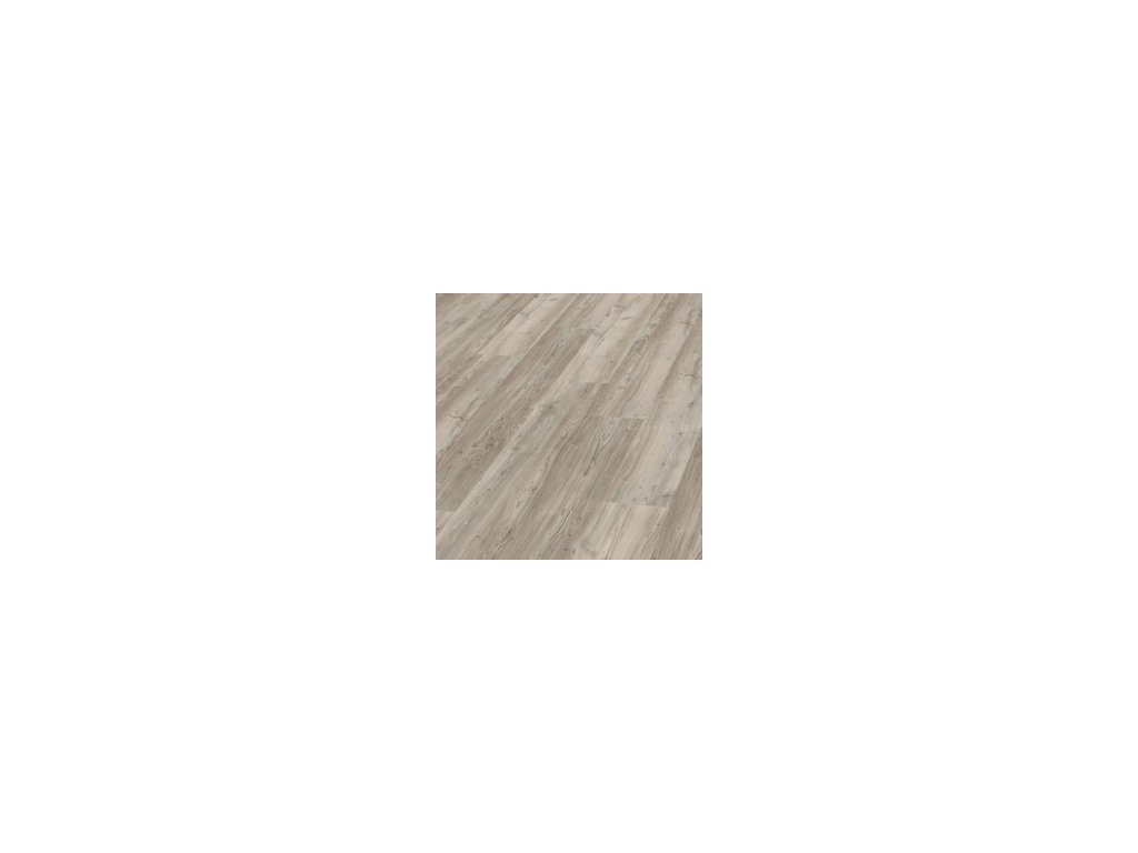 Dusky Pine | 5844