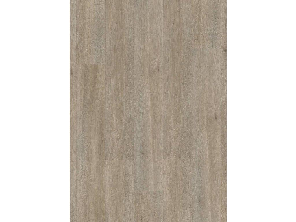 Hedvábný dub šedohnědý