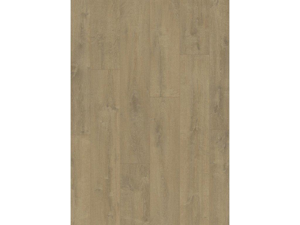 Sametový dub pískový
