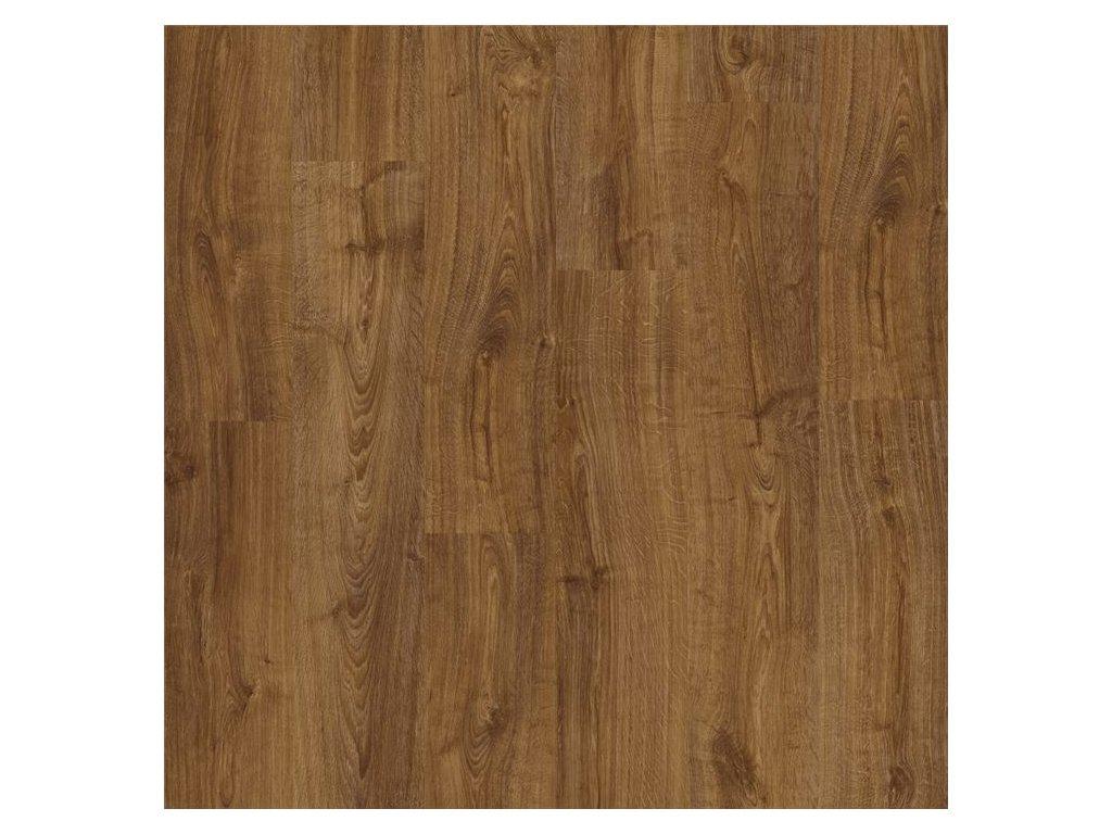 Dub podzimní hnědý AVMP 40090