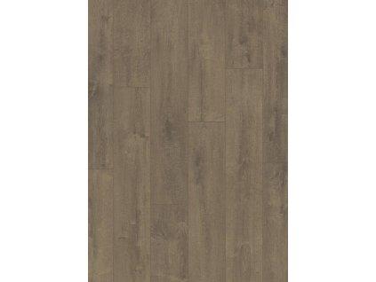 Sametový dub hnědý