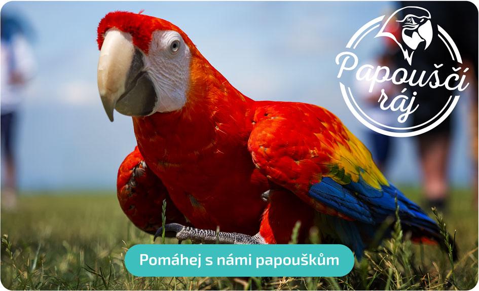 Pomáhej s námi papouškům