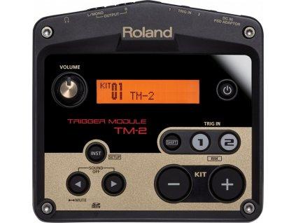 BOSS TM-2