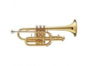 Vincent Bach Bb-Cornet 181 Stradivarius 181SMLG