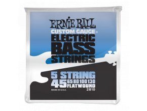 Ernie Ball Flatwound 5-string.045-.130