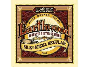 Ernie Ball Earthwood Silk & Steel Regular 80/20 Bronze Acoustic Guitar Strings