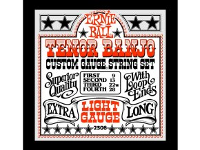 Ernie Ball Light Loop End Stainless Steel Tenor Banjo Guitar Strings