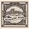 Ernie Ball Acoustic Earthwood Acoustic.045-.095