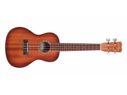 Elektroakustické ukulele