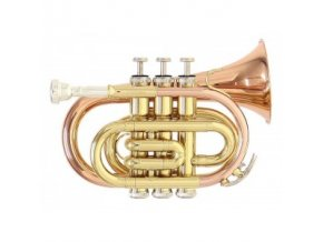 GEWA Bb-Pocket trumpet Roy Benson PT-101G PT-101G