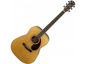 Fender PM-1 Standard Dreadnought with Case, Natural