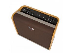 Fender Acoustic Pro, 230V EU