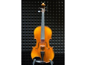 Petz AC300E-406 Viola
