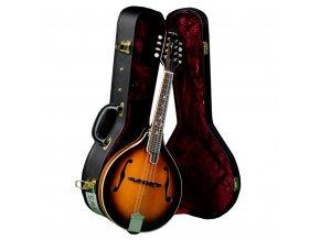 sigma sma 1 a mandolin