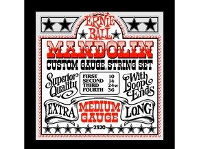 Ernie Ball Medium Loop End Stainless Steel Mandolin Guitar Strings