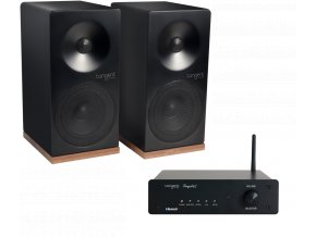 SpectrumX4 Ampster