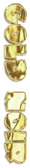 GOLD-NOIR