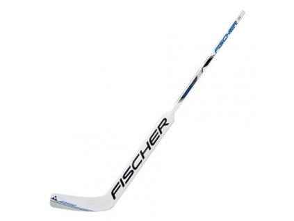GW250 YTH brankářská hokejka