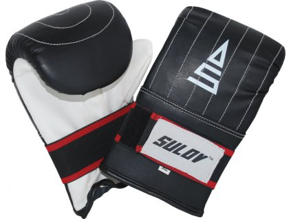 Box rukavice pytlovky SULOV  DX, pár