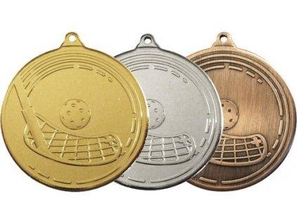 MDS13 medaile