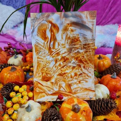 Podzimní duch lesa: energetický obrázek