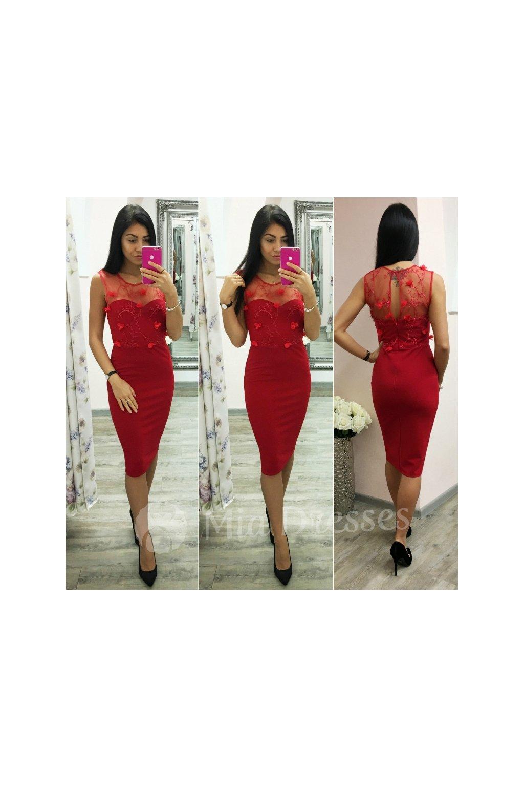 Mia Dresses - Spoločenské šaty 095cddf44d