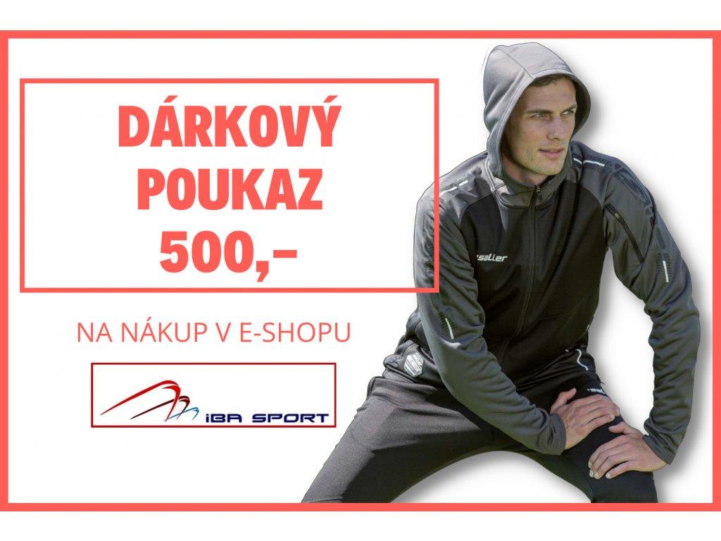 DP 500