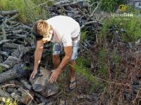 sorgfältige Auswahl des Holzes in den Hügeln von Karpathos