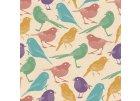 ptáci a ptáčci