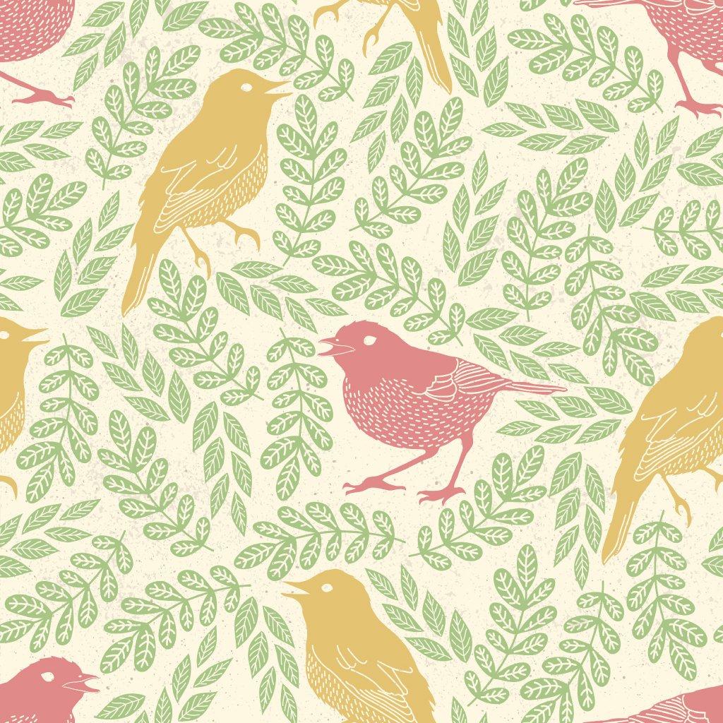 765016 ptáčci