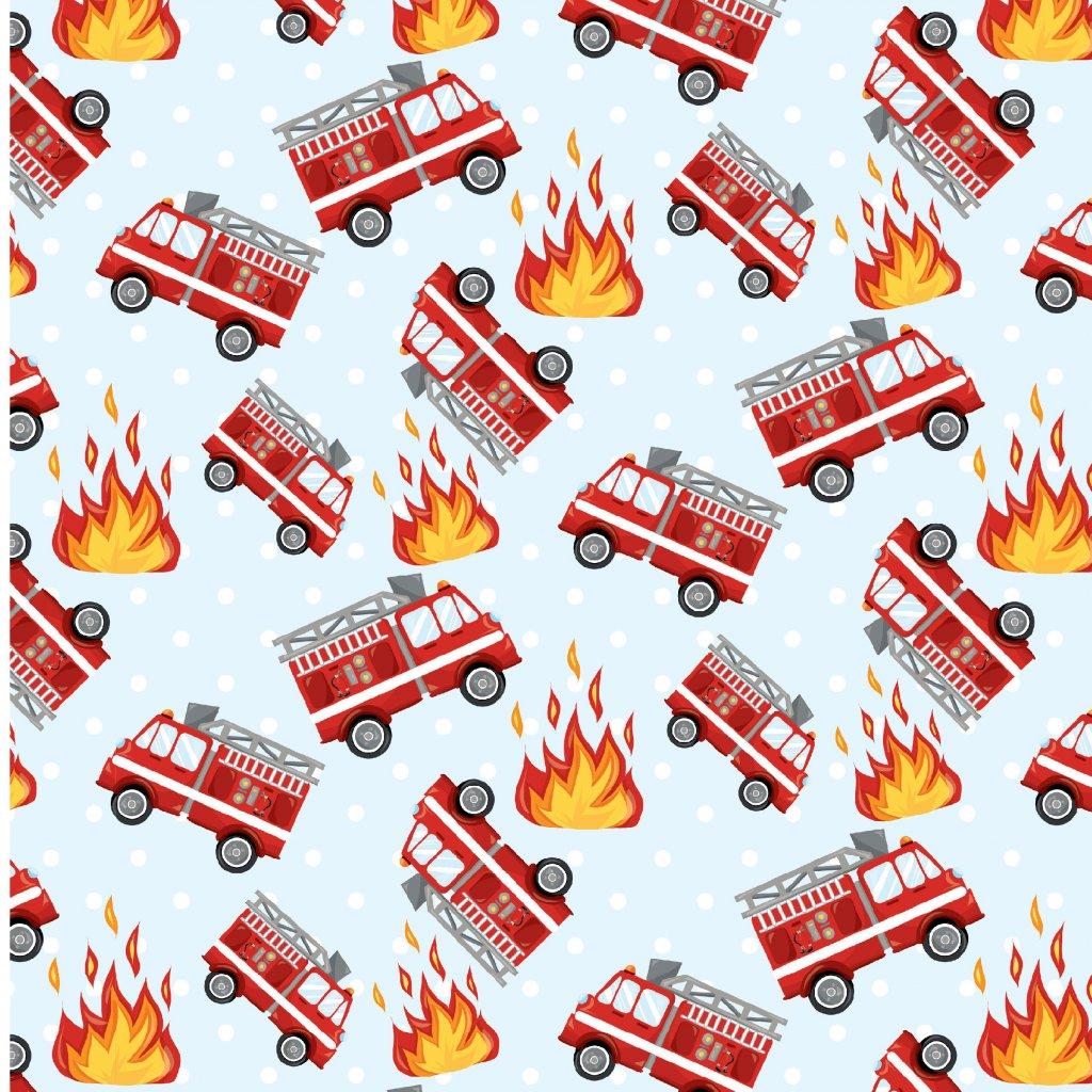 742001 hasiči (1)
