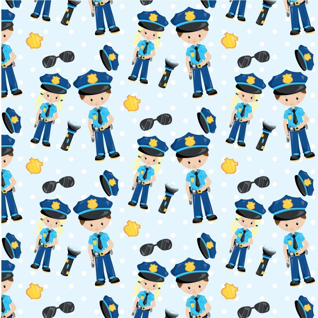 742011 policie (5)