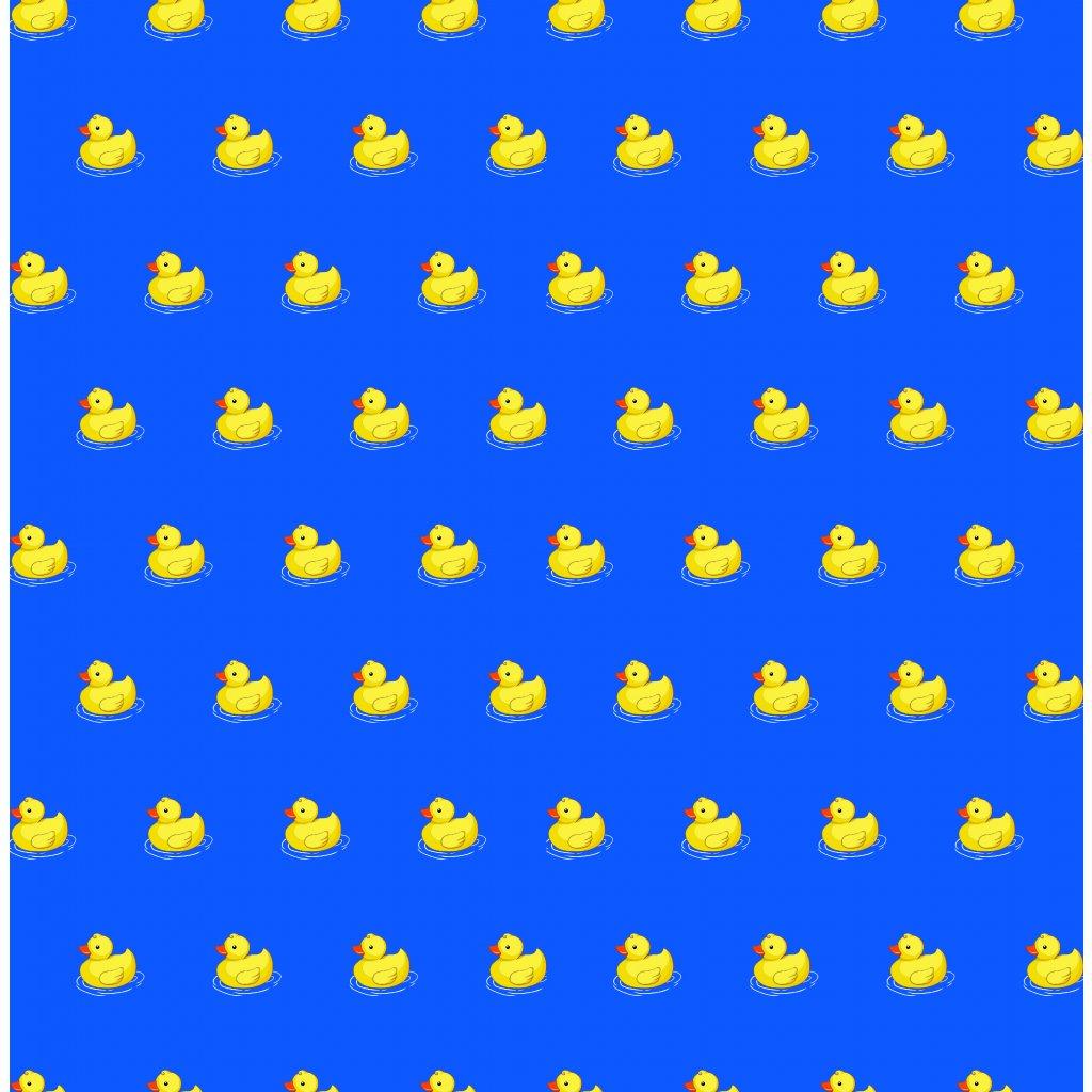 765124 2 kačky A na středně modré 1