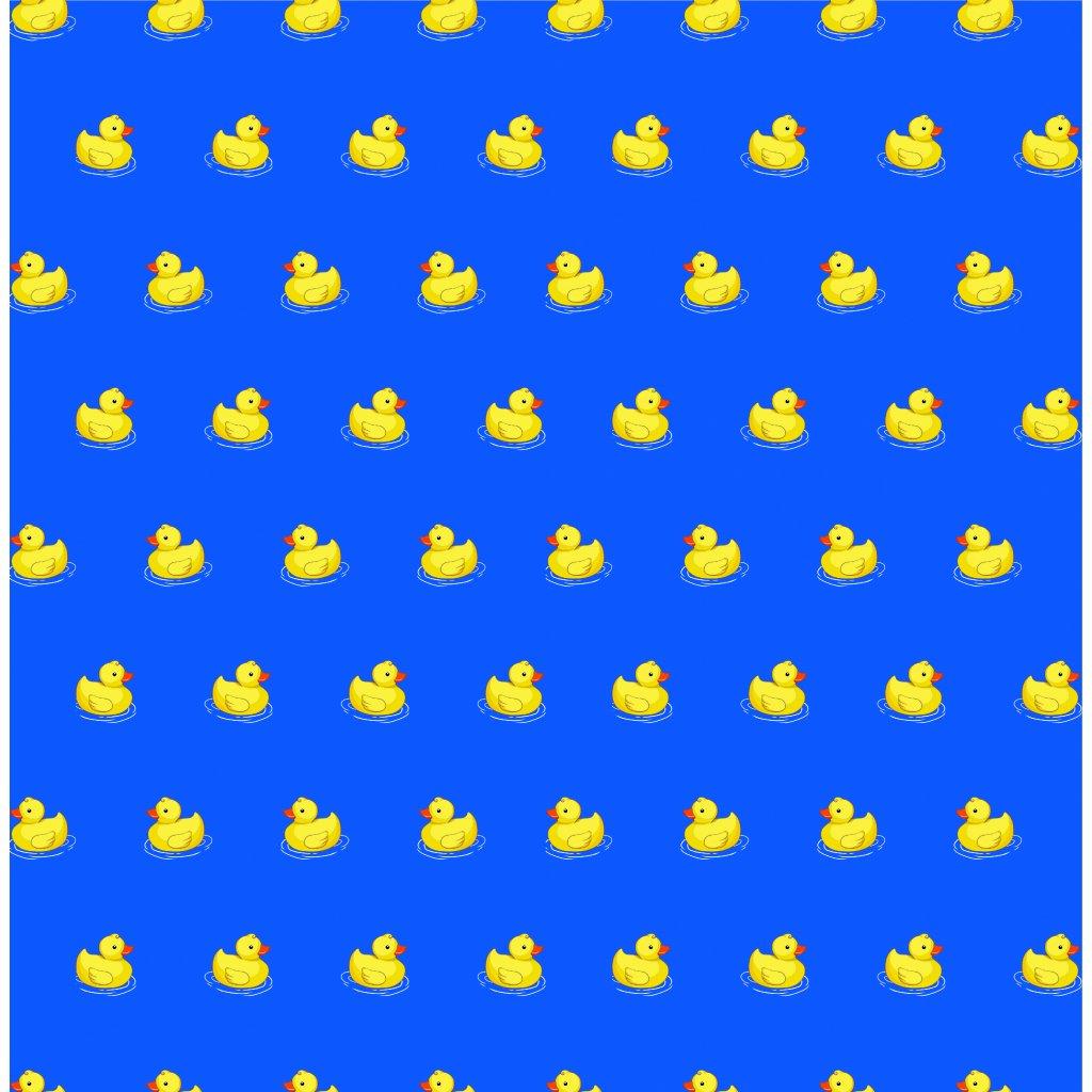 765124 4 kačky B na světle modré